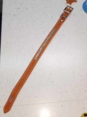 ANTKAKLIS ŠUNIUKUI BLIZGUS (NATŪRALIOS ODOS) 1,6cm pločio