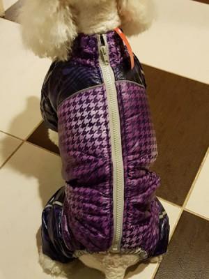 NEPERŠLAMPANTIS KOMBINEZONAS ŠUNYTEI (VISIŠKAI DENGIANTIS PILVUKĄ) violetinis